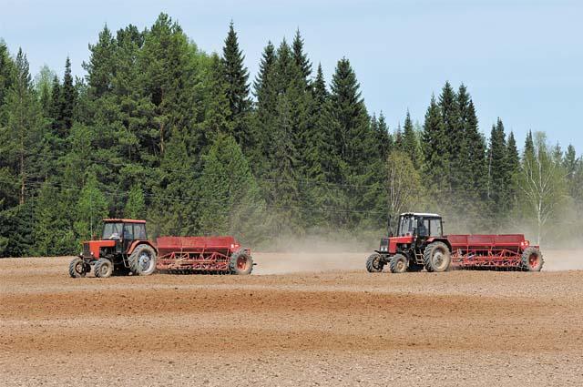 Предварительно аграрии провели паровую обработку почвы.