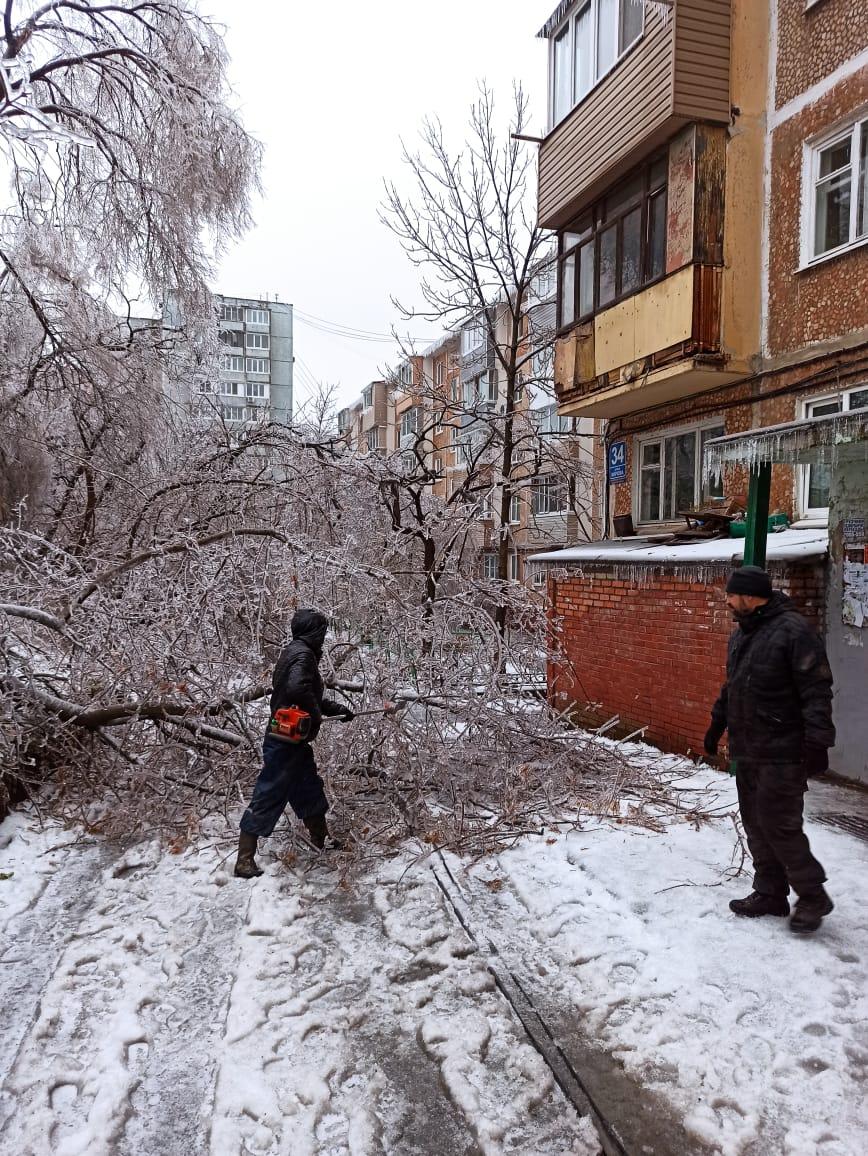 Дворы завалены упавшими деревьями.