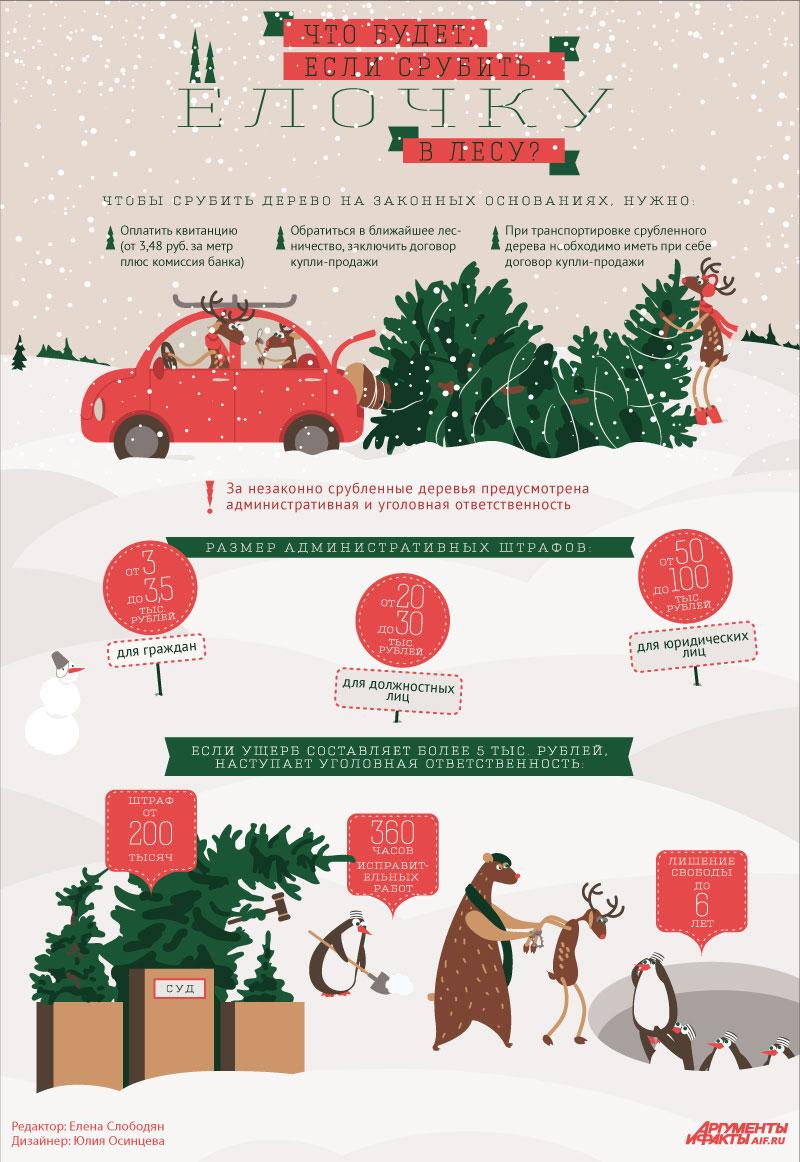 Что будет, если срубить ёлку в лесу? Инфографика