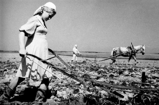 Дети всегда помогали колхозу: косили сено, собирали урожай, участвовали в посевной.