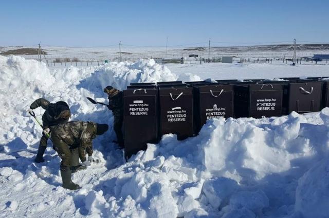 Самтоятельно очистить клетки от снега и льда не получилось.
