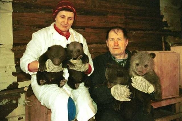 Методику работы с медвежатами у семьи Пажетновых перенимали другие страны.