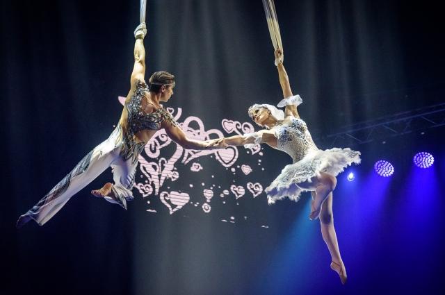 «Лебединый» танец под куполом цирка.