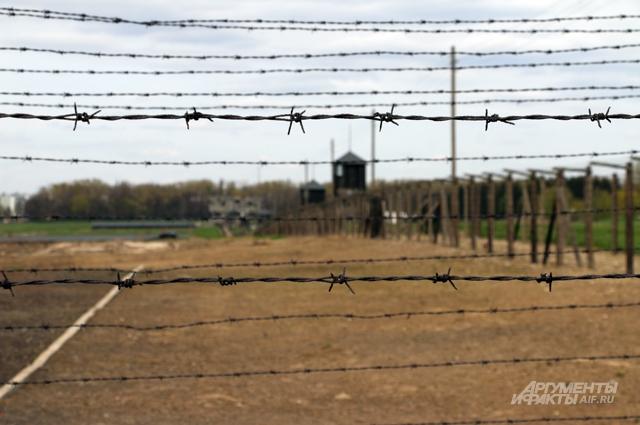 В Майданеке сохранилось почти всё. Двойная ограда с колючей проволокой, вышки охраны СС и почерневшие печи крематория.