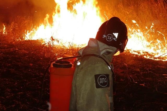Добровольцы наравне с профессиональными пожарными работают в самом пекле.