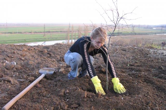 Светлана Рукавишникова наравне с мужем облагораживала склон