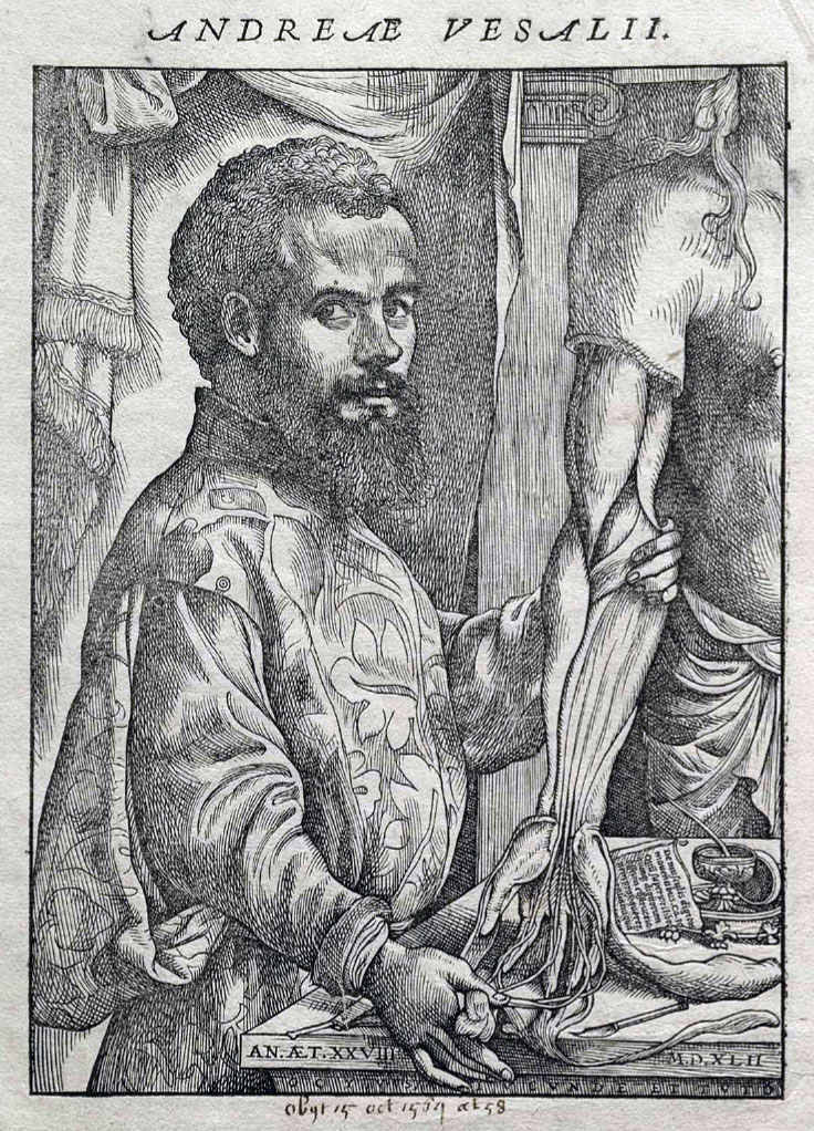 Андреас Визалий.
