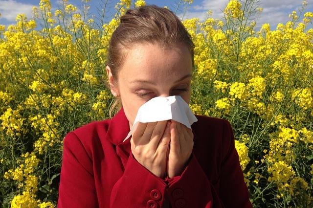 С каждым годом количество аллергиков растет.