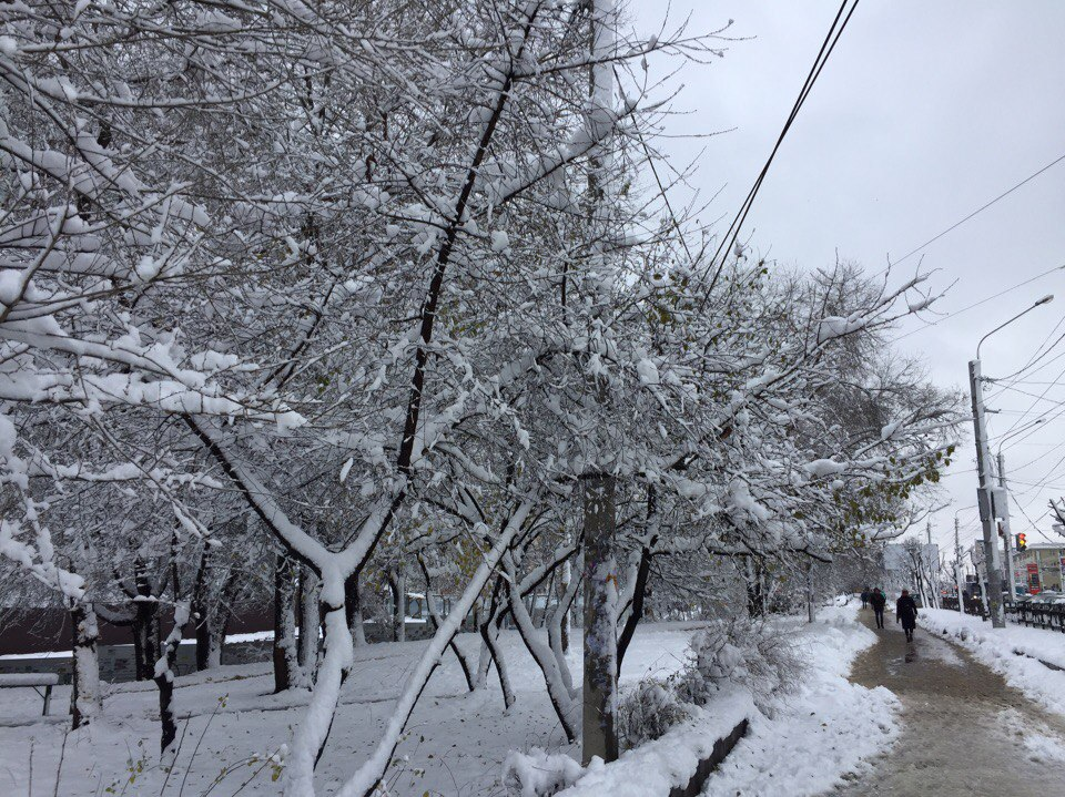 снегопад в воронеже