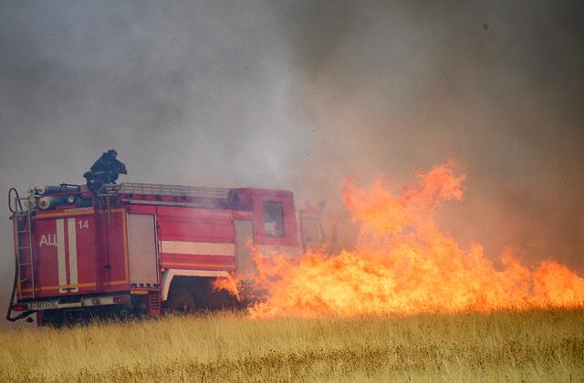 Сотрудники МЧС РФ на месте природного пожара в Воронежской области.