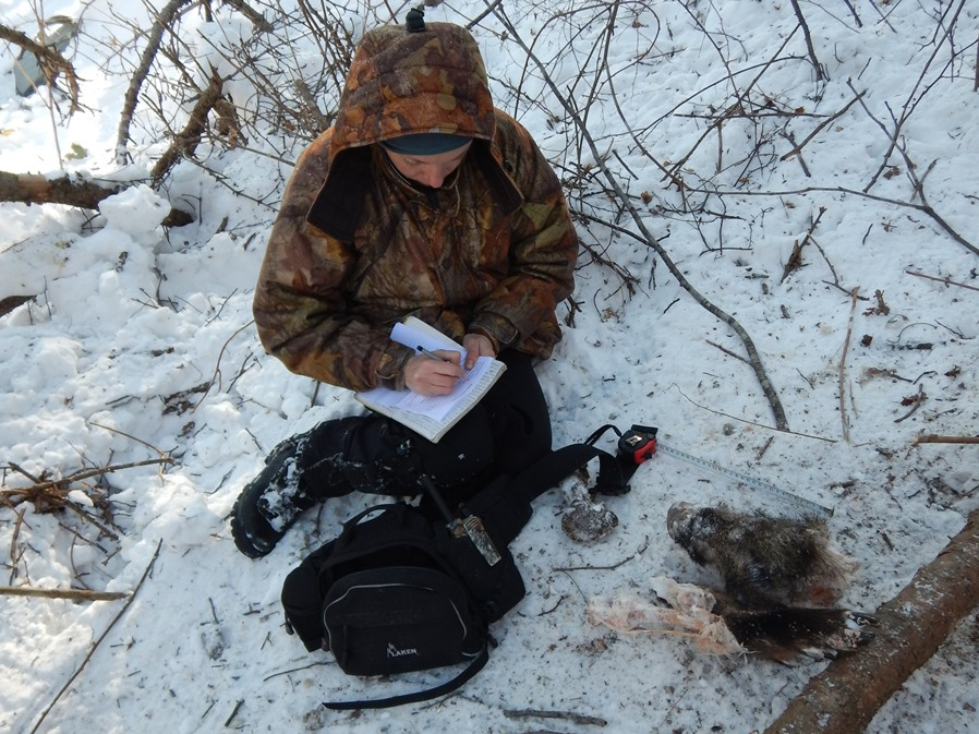 Описание места охоты.
