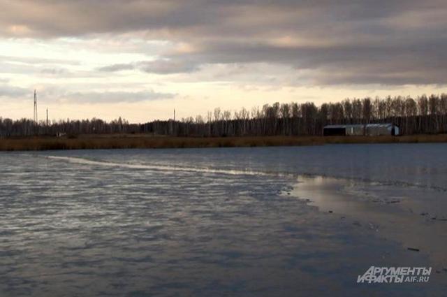На озере Курейном установился первый лёд, малыши побежали играть к камышам