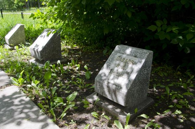 Могила Никифора Дамьяновича Павлова на законсервированном кладбище.