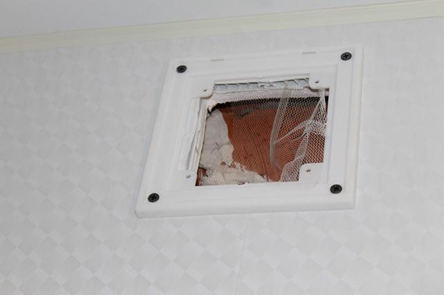 Вместо вентиляционного отверстия строители повесили муляжи.