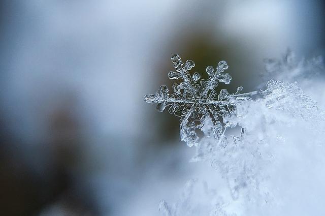 Построить снежное жилище сможет любой желающий.