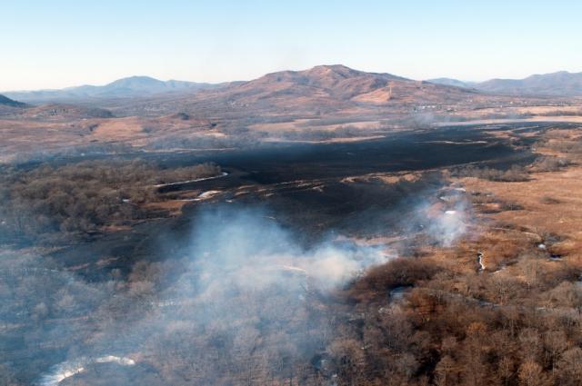 Зимние лесные пожары не менее страшны летних.