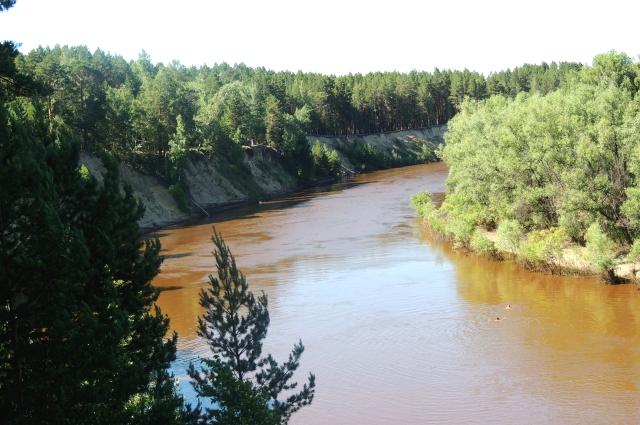 Река Тара в окрестностях легендарного села Окунево Муромцевского района.