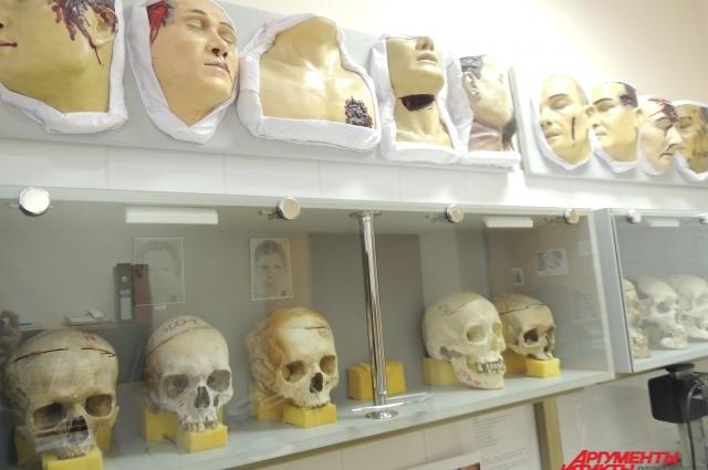 После того, как черепа очищают от остатков ткани и кожи, эксперты делают письменный анализ и фиксируют для себя список отличительных черт.