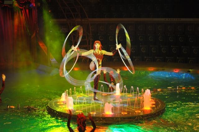 Уютность и камерность ростовского цирка создает у зрителей ощущение своей личной причастности к волшебству, происходящему в зале