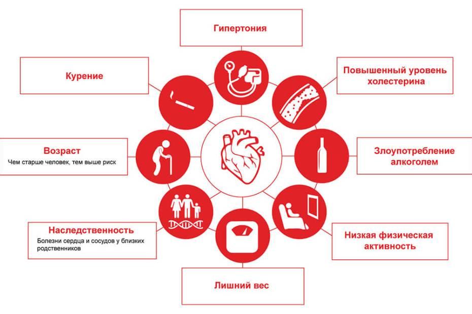 Факторы риска развития сердечно-сосудистых заболеваний