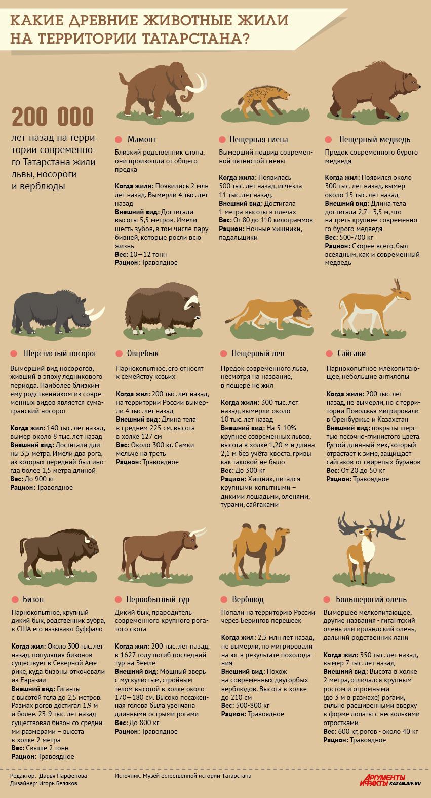 инфографика. кто жил на территории татарстана 200 000 лет назад