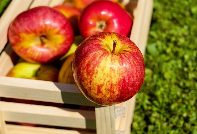 Яблоки лучше положить в ящик и хранить подальше от других фруктов и овощей.