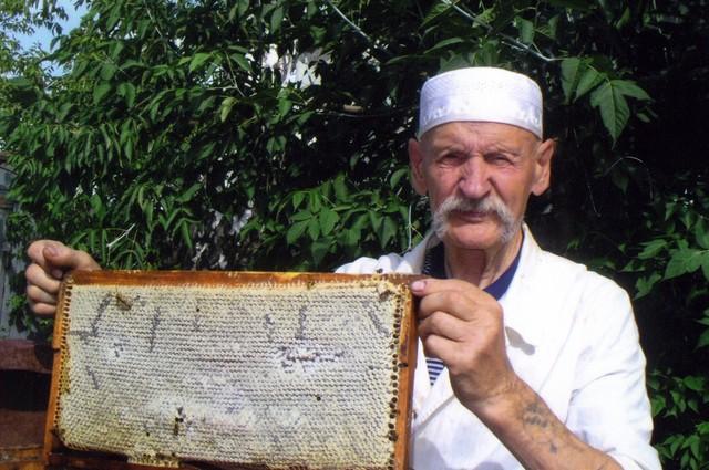 пасечник, пчеловод