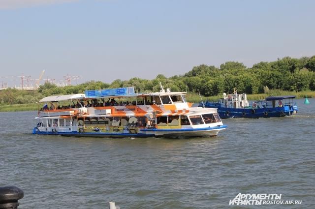 Зеленую зону на левом берегу реки Дон экологи предлагают не отдавать под новую застройку.