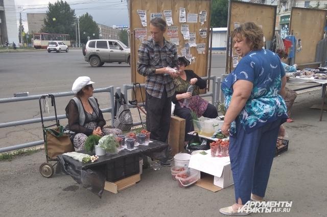 Садоводы и огородники иногда выдают за экологически чистый урожай с участка фрукты с супермаркетов или рынков.