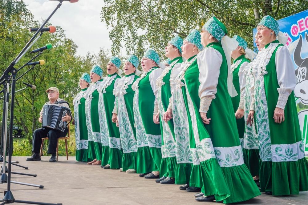 Хоровой ансамбль из Олонецкого района