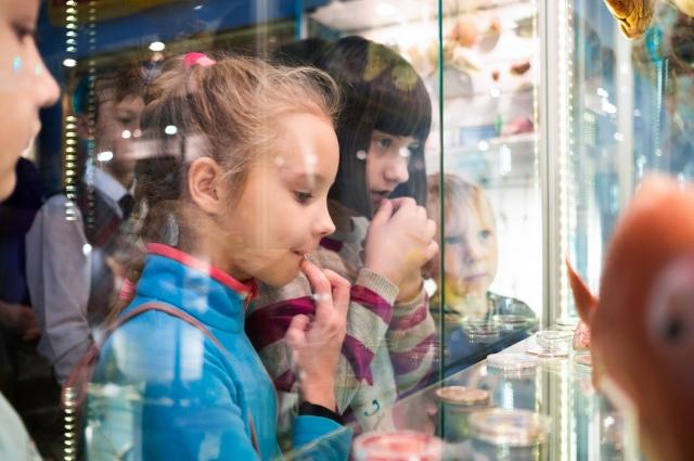 Дети в Музее рыбы и рыболовства в Феодосии.