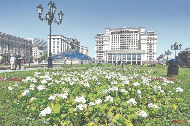 Сколько цветов высадят в Москве?