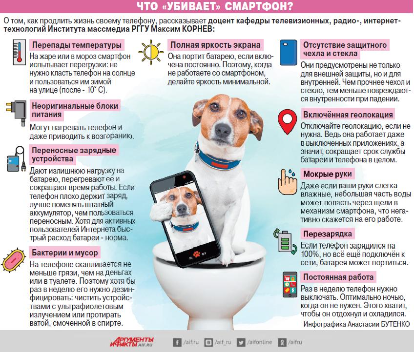 Смартфоны, инфографика