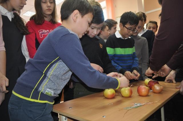 Ребята учатся получать энергию из яблок.