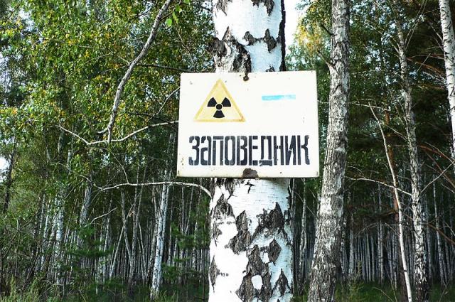 Восточно-Уральский заповедник