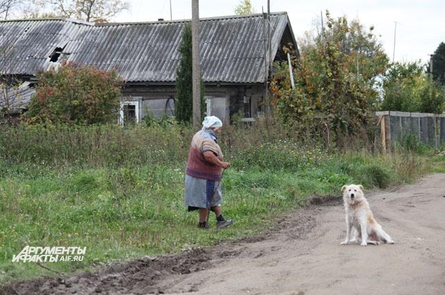 В Назарово кроме хозяев усадьбы трое жителей — доживающие свой век старик и старуха и москвич.