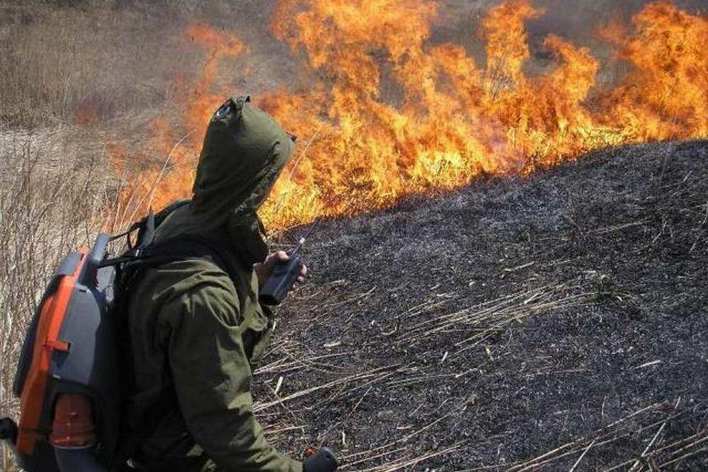 Добровольцы борются с огнём