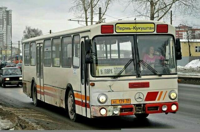 Около пяти лет Светлана работала водителем пассажирского автобуса.