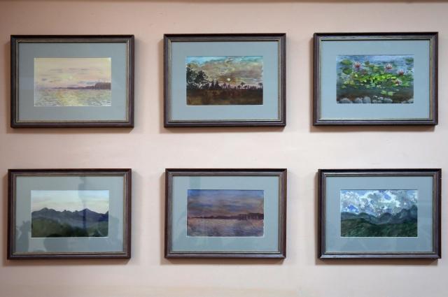 Картины красноярской школьницы.