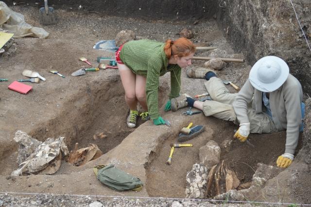 Первыми могильник разрыли мародеры