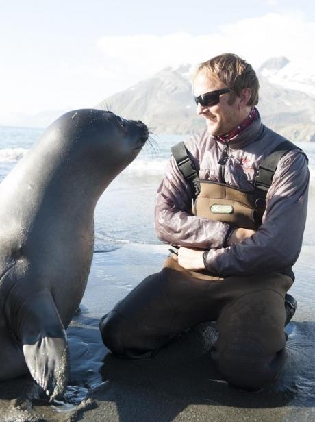 «Хотя морским слонам на наши запреты наплевать, они ещё те любители пристать к туристам».