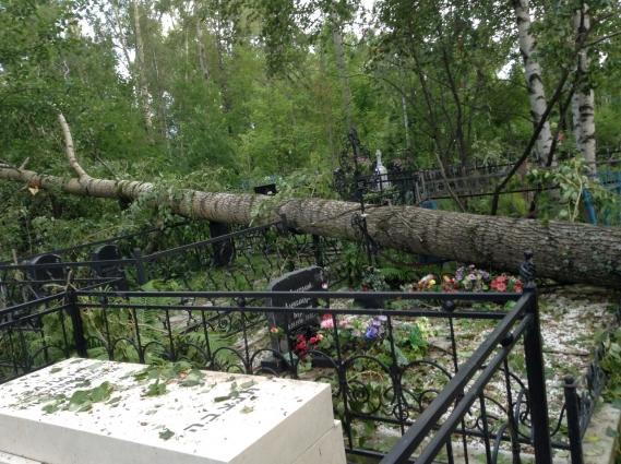 Вологодскому кладбищу тоже досталось.