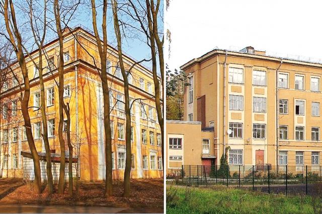 Школа-интернат для глухих детей № 1 и Академическая гимназия СПбГУ.