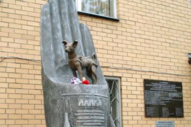 В 2008 году в Москве был установлен памятник первой собаке, побывавшей в космосе.