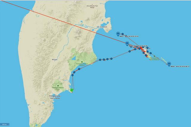GPS-трёх помеченных сивучей. Одна самка с детёнышем уже у берегов Камчатки.