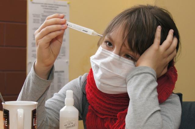 Пока эпидемии гриппа и ОРВИ в регионе специалисты не зафиксировали.