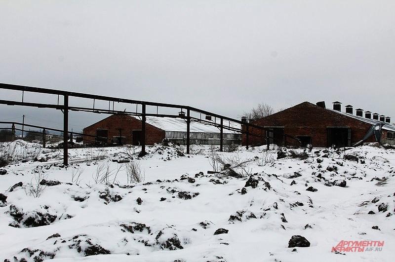 Ферма, существовавшая с 60 70-х годов, пришла в упадок. Скапливающийся навоз перестали вывозить