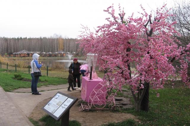 Одно из украшений Белгорода - парки.