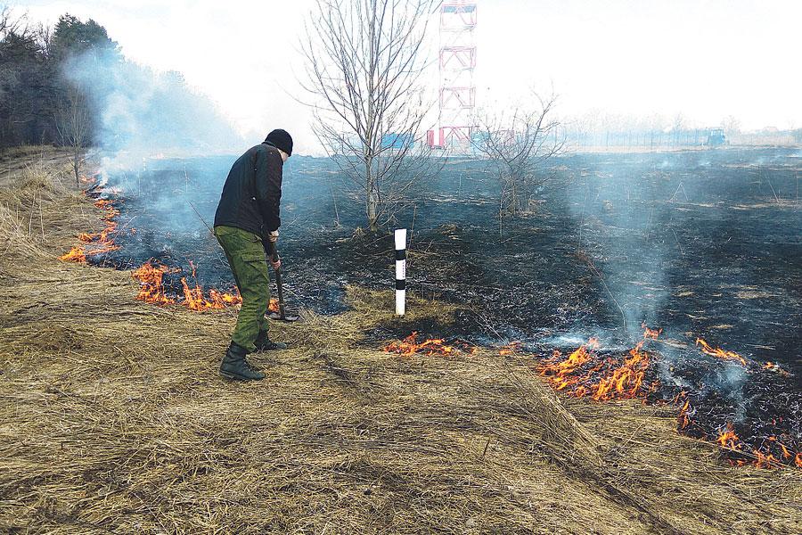 Чтобы не допустить возгораний, лесоводы проводят контролируемые палы сухой травы.