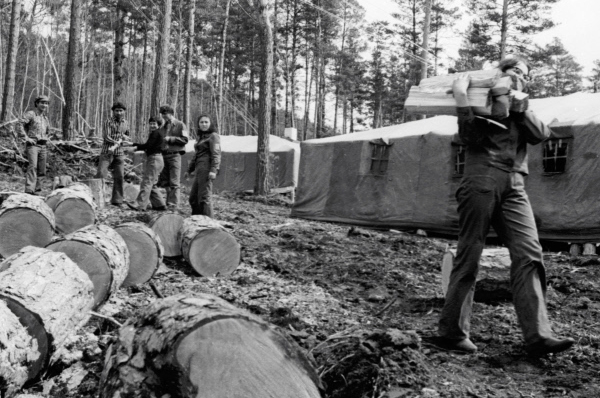 Строители БАМа, живущие в палаточном посёлке Звёздный, заготавливают дрова